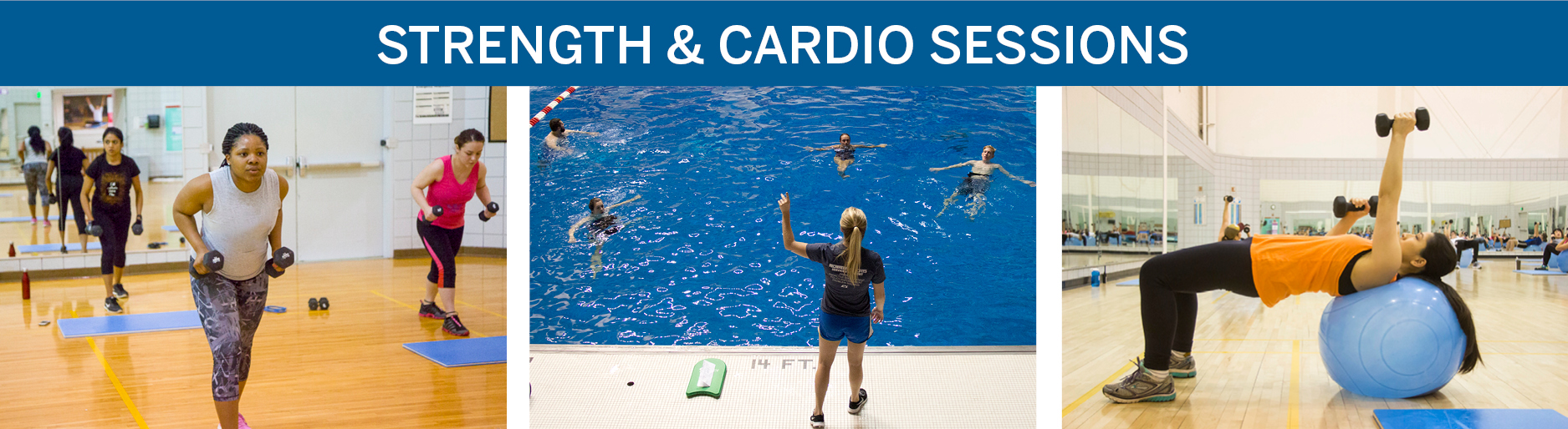 Strength and Cardio Sessions